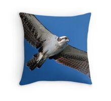Aerial surveillance Throw Pillow