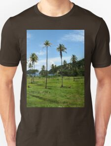 a colourful Dominica