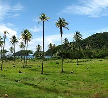 a colourful Dominica landscape by beautifulscenes