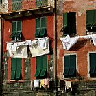 Cinque Terre Windows by Erin Kanoa