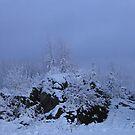 First Snow  Nov.27th 2009 by eoconnor
