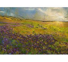 Lavender Hills Photographic Print