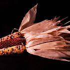 Winter Corn by Jeffrey  Sinnock