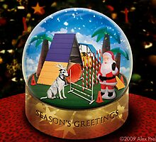Zelda's Season's Greetings - Dog Agility Style by Alex Preiss