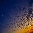 Florida Sky I by deahna