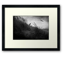 Park Point Framed Print
