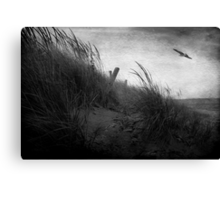 Park Point Canvas Print