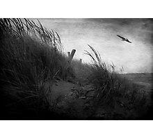 Park Point Photographic Print