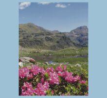 an awe-inspiring Andorra landscape Kids Clothes