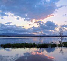 Reflection by Liza Yorkston