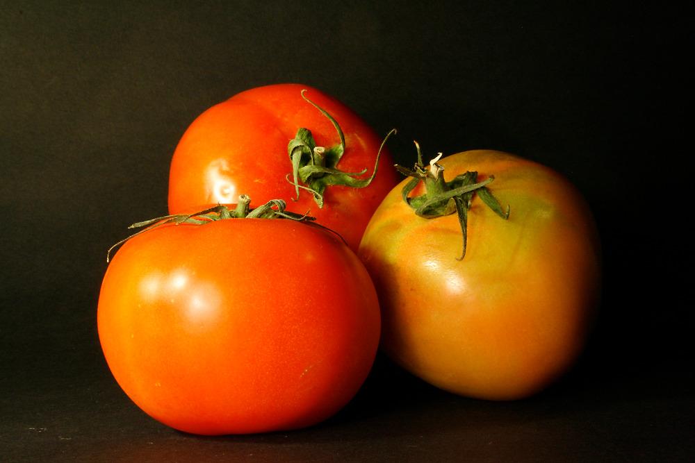 tomatoes by marinamagri
