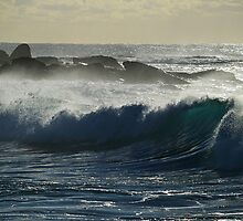 Frolic Ocean by Anton Gorlin