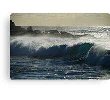 Frolic Ocean Canvas Print