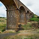 Railway Bridge, Malmsbury Victoria by Joe Mortelliti