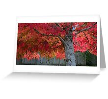 Tree of flames Greeting Card