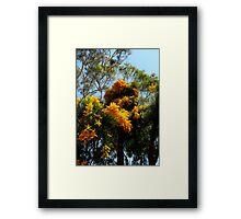 """Christmas Tree""  Framed Print"