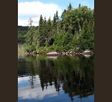 a sprawling Canada landscape Unisex T-Shirt