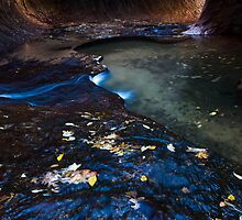 Flowing Time, The Subway, Zion National Park by Alan C Williams