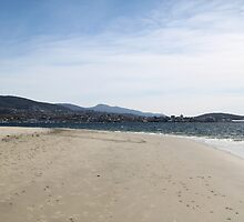 Sandy Bay Hobart Beach City View by Jane McDougall