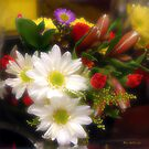 Flora Radiant by RC deWinter
