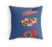 Flying in the Wind.............. Throw Pillow