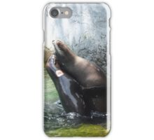 seal wrestling iPhone Case/Skin