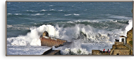 """"""" The result of force 10 gales"""" by Malcolm Chant"""