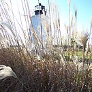 Piney Point Lighthouse Southern Maryland by icesrun