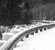 """Girdwood Guardrail"" by Candler Photography"