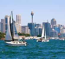Sydney Harbor Sails by ijam357