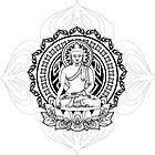 Buddha by Cam Fawns