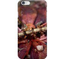 ⊇ iPhone Case/Skin