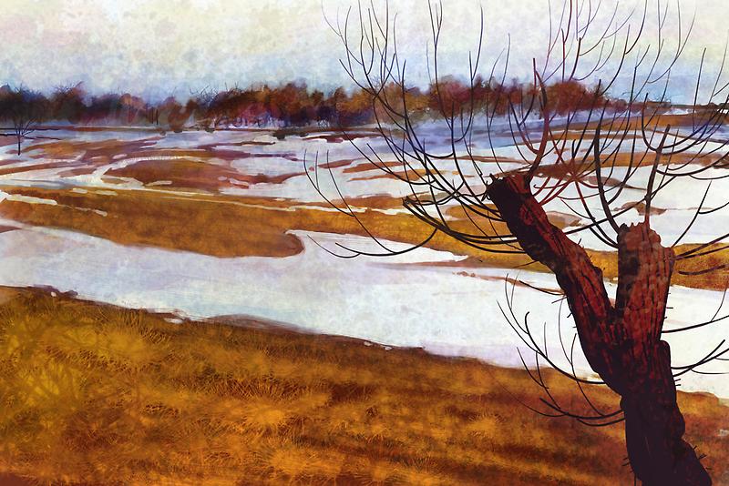 Winter farmlands by David Sourwine