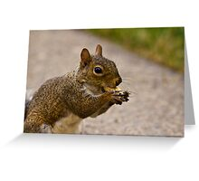 Stuffing it In Greeting Card