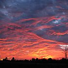 Orange sherbert skies by Kathy Yates