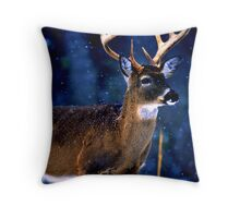 The Light Shining Down Throw Pillow