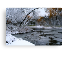 Winter Wonderland... Canvas Print