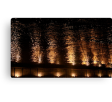 A photograph of pure delight Canvas Print