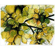 Autumnal Succulents Poster