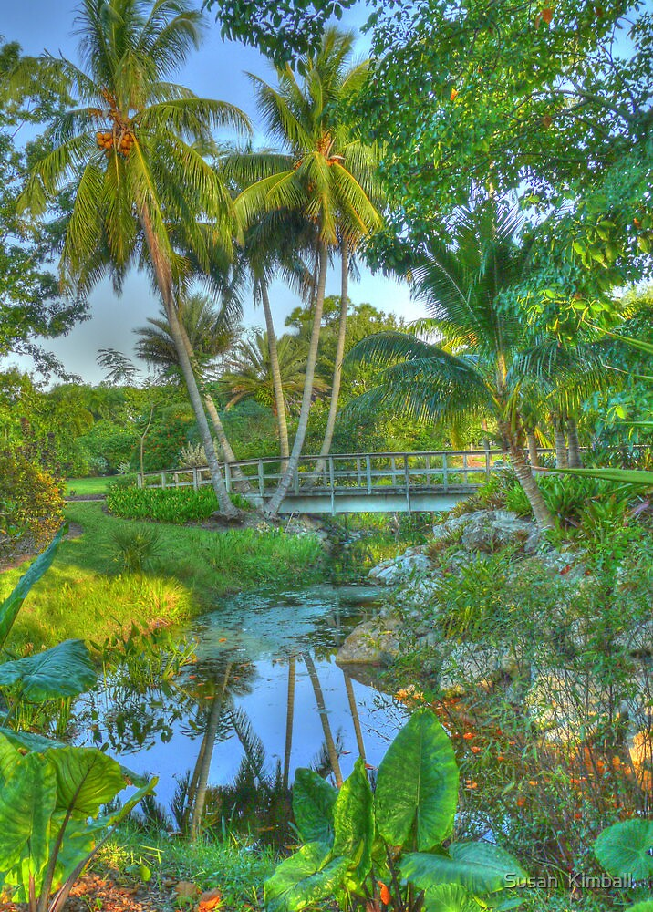 Footsteps in Paradise by Susan  Kimball