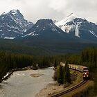Train through the Canadian Rockies by chwells