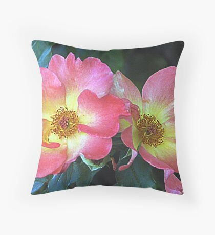 Last of the Knockout Roses 2009 Throw Pillow