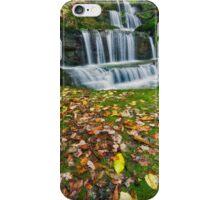 Autumn Cascade iPhone Case/Skin