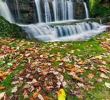 Autumn Cascade by Ian Mitchell
