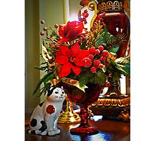 """""""The Poinsetta and the Porcelain Cat"""" Photographic Print"""