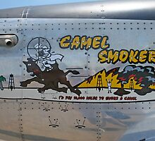 Camel Smoker by Karl R. Martin