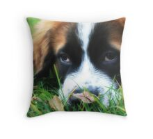 St. Bernard - Puppy Eyes Throw Pillow