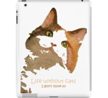 Life Without Cats ...I Don't Think So! iPad Case/Skin