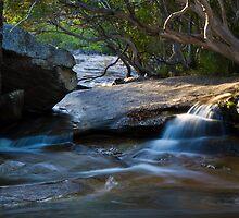 Davis Creek by Ryan Pedlow