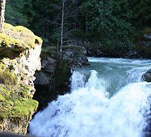 """Roaring River"" by Lynn Bawden"